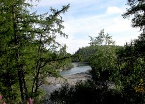 Река Харбей
