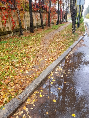 Осень (2)