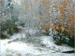 Когда зима с осенью встретились
