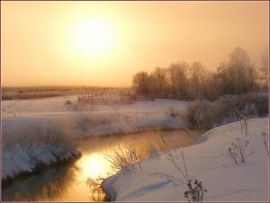 Торгоша зимним утром