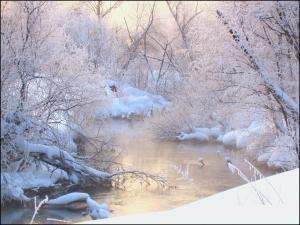 Река Торгоша зимним утром