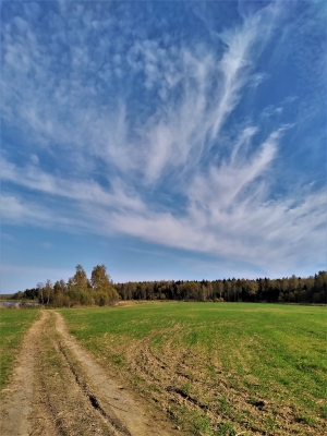 Перистое небо