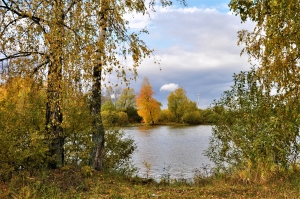 Очаровательная осень