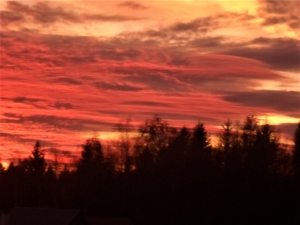Реальное небо без фильров (4)