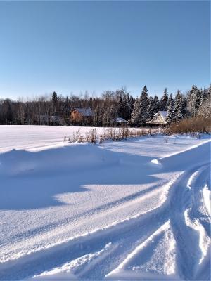Пушистый снег в январе