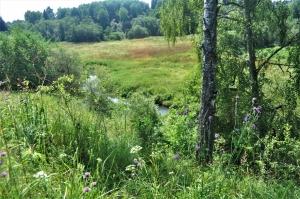 Неповторимая красота благословенной земли Радонежской! (2)