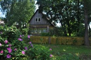 Лето в деревне
