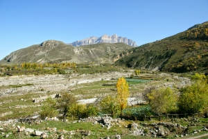 Капуста и горы