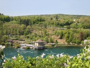 Рейн после водопада