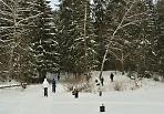 На лыжной прогулке